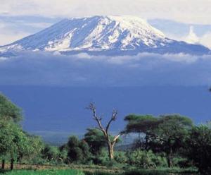 Gunung tertinggi di Afrika kini tengah mencair esnya.